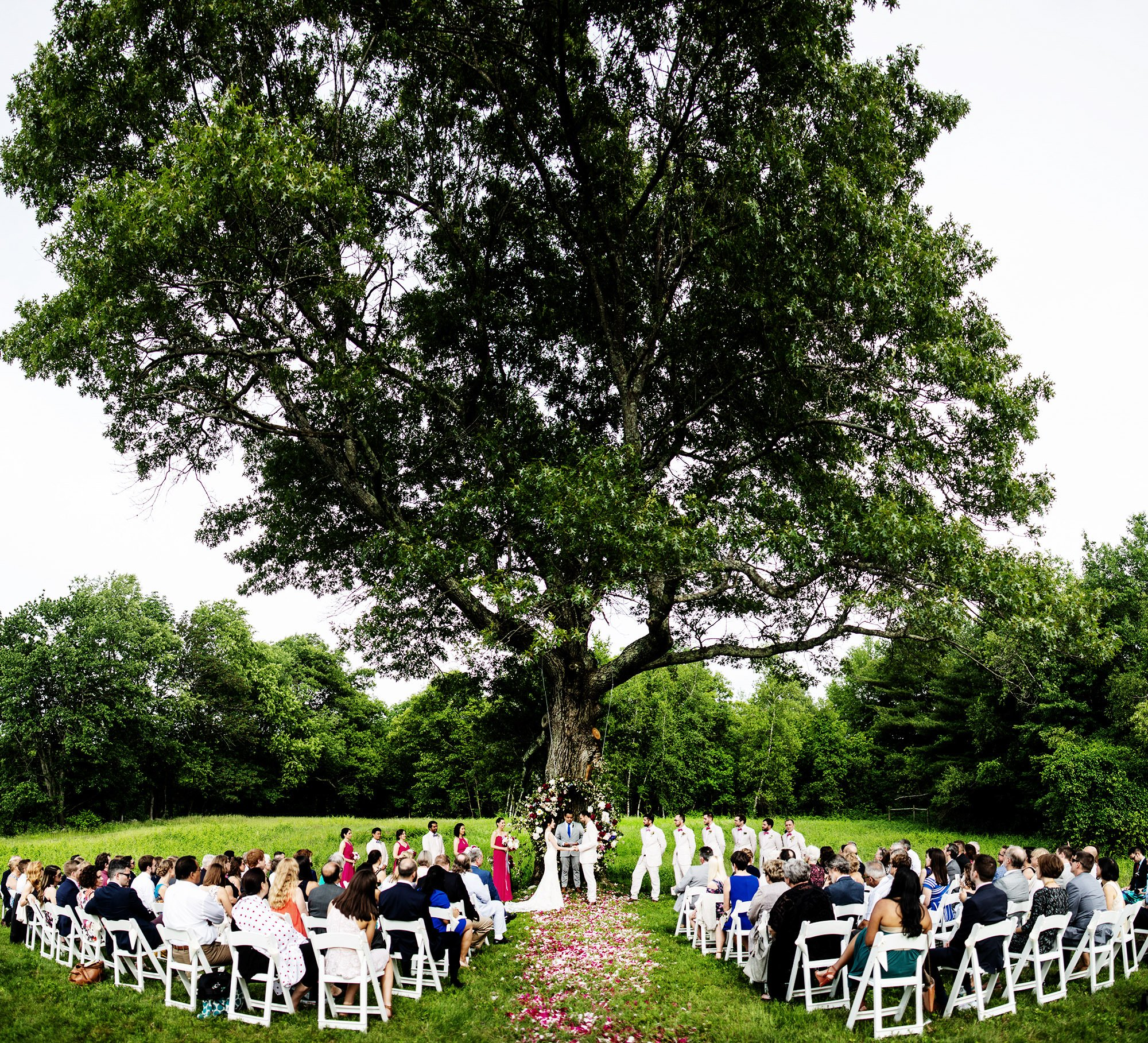 The outdoor wedding ceremony on the bride's farm.