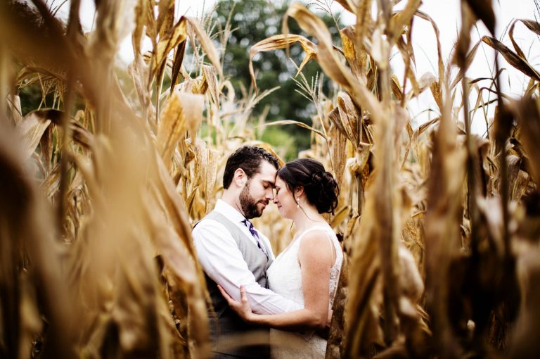 Bohemia Manor Farm Wedding in Chesapeake City, MD I The bride and groom hug in a cornfield.