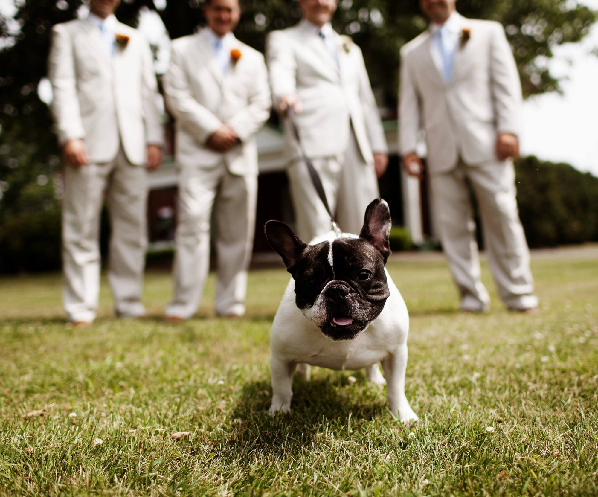 A dog poses for a portrait with the groomsmen before the wedding ceremony at Marriott Ranch.