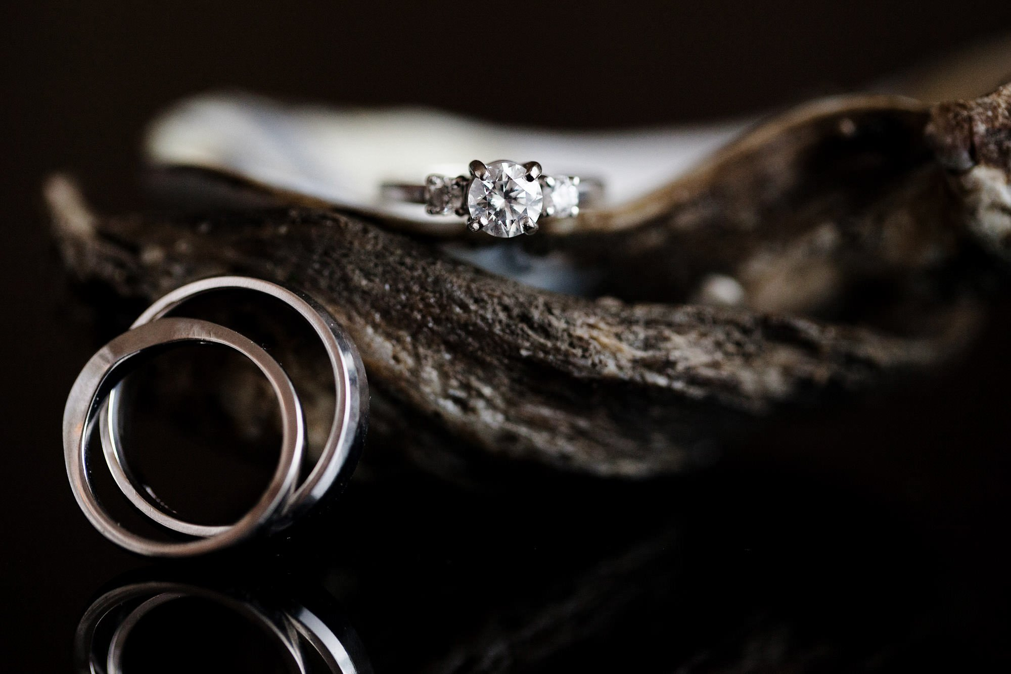A ring detail in an oyster shell.