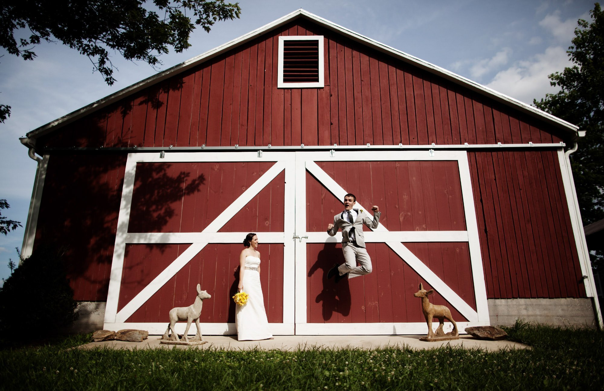 The groom jumps for joy in front of the red barn during his Sunset Hills Vineyard wedding.