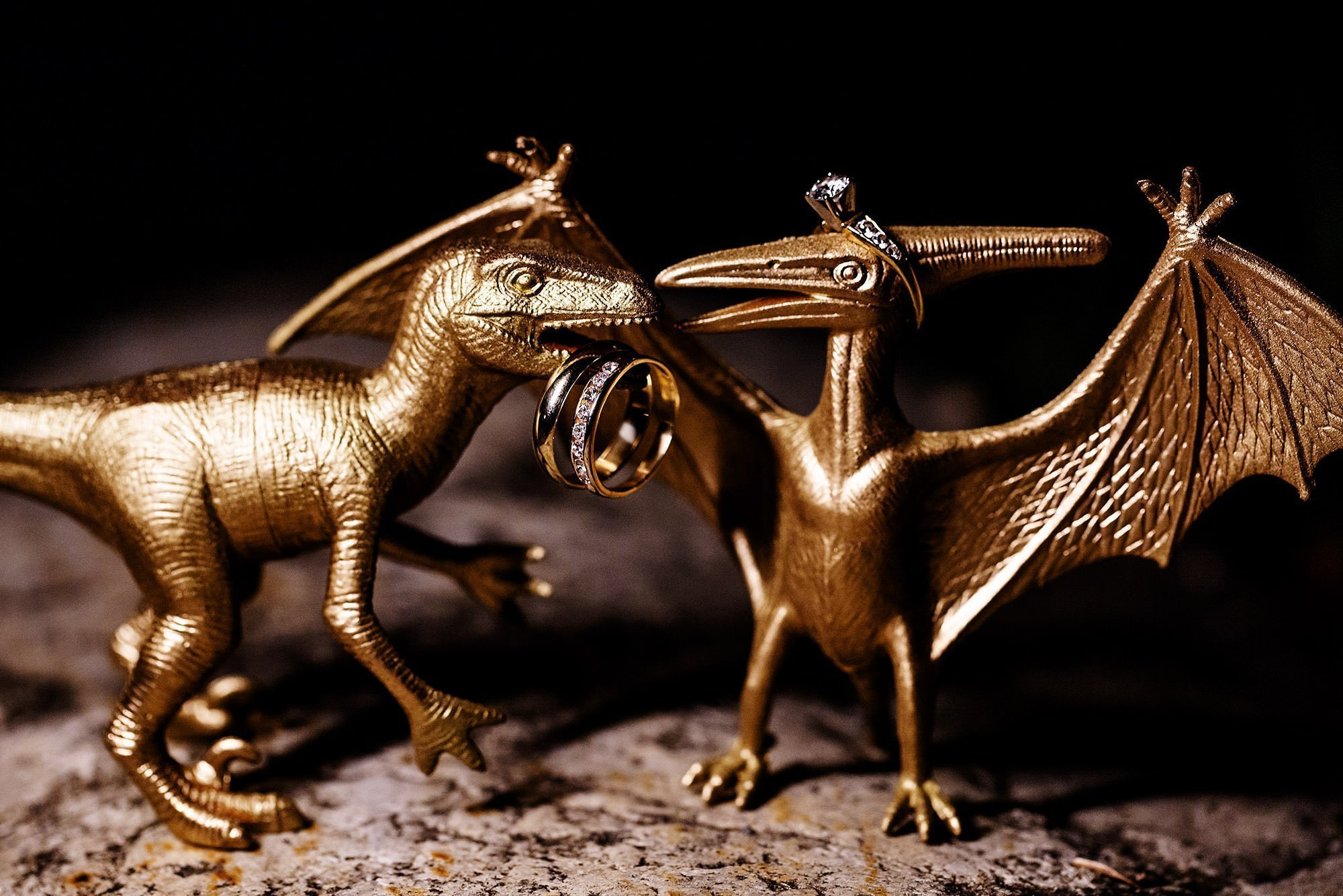Shelburne Museum Wedding  I  A detail of the couples' rings with dinosaur figurines.